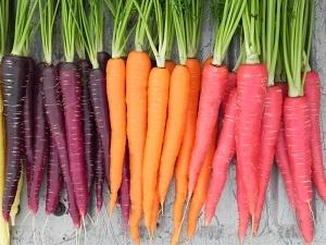 Agent Retention Carrot Options